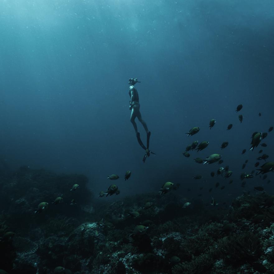 ブランパン 国連世界海洋デー
